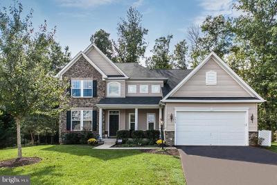 Warrenton Single Family Home For Sale: 3429 Crew Court