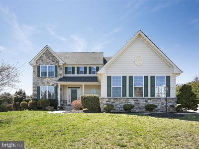 Warrenton Single Family Home For Sale: 7525 Edington Drive