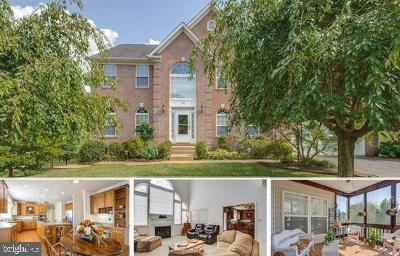 Warrenton Single Family Home For Sale: 7481 Admiral Nelson Drive