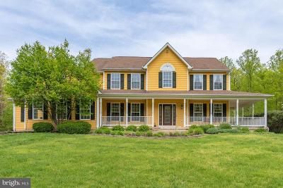 Fauquier County Single Family Home For Sale: 5457 Greenstone Lane