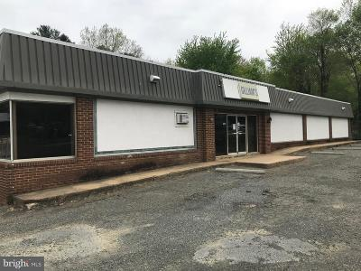 Warrenton Commercial For Sale: 105 W Shirley Avenue