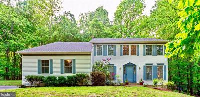 Warrenton Single Family Home For Sale: 7170 Auburn Mill Road