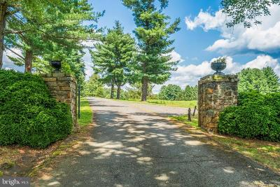 Warrenton Single Family Home For Sale: The International House, Airlie Road, Warrenton