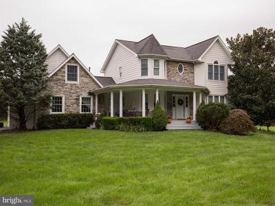 Winchester Single Family Home For Sale: 313 White Hall Road