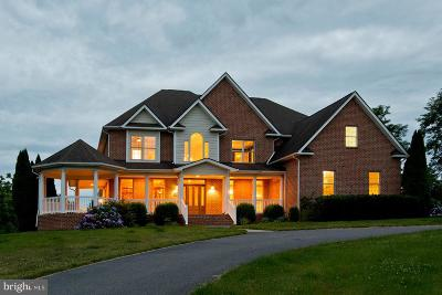 Frederick County Single Family Home For Sale: 613 Stonymeade Drive