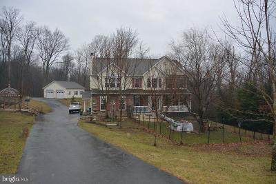 Frederick County Single Family Home For Sale: 203 Banks Drive