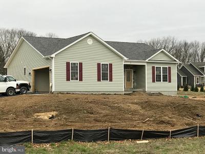 Winchester VA Single Family Home For Sale: $299,900