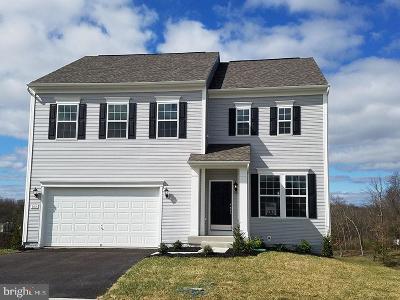 Single Family Home For Sale: 106 Megan Lane