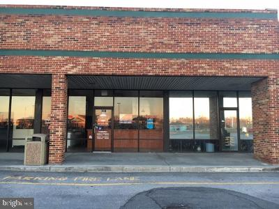 Stephens City Commercial Lease For Lease: 320 Fairfax Pike #11