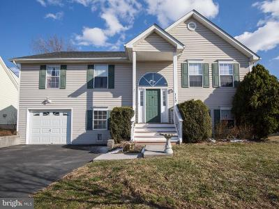 Stephens City Single Family Home For Sale: 113 Cottonwood Avenue