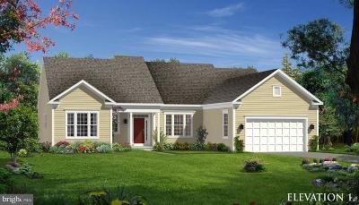 Stephens City Single Family Home For Sale: Upperville Drive #POPLAR I