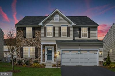 Frederick County Single Family Home For Sale: 205 Mosaic Court