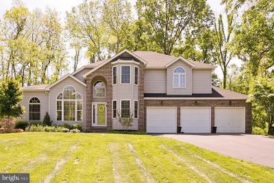 Winchester Single Family Home For Sale: 225 Cotton Ridge Road