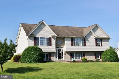 Stephens City Single Family Home For Sale: 101 Jutland Court