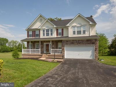 Middletown Single Family Home For Sale: 357 Chimney Circle
