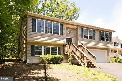 Frederick County Single Family Home For Sale: 1024 Lakeview Drive
