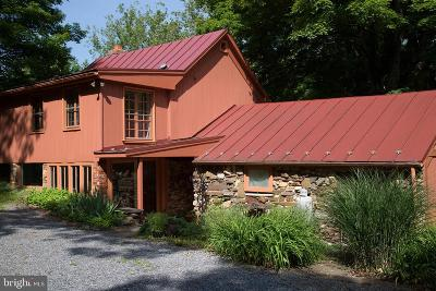 Frederick County Single Family Home For Sale: 203 Wardensville Grade