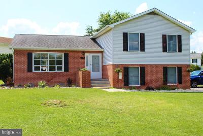 Stephens City Single Family Home For Sale: 217 Raven Road