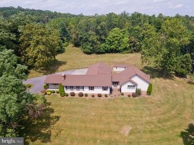 Winchester Single Family Home For Sale: 392 Brookneil Drive