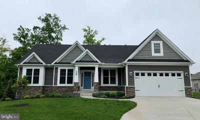 Winchester Single Family Home For Sale: 227 Taggart Drive