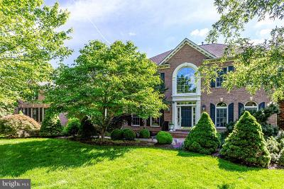 Reston, Herndon Single Family Home For Sale: 11580 Cedar Chase Road