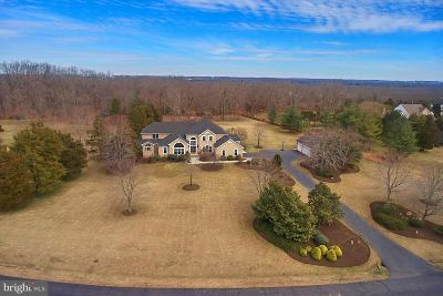 Centreville Single Family Home For Sale: 5331 Chandley Farm Circle