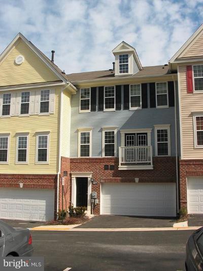 Falls Church Rental For Rent: 8071 Nicosh Circle Lane