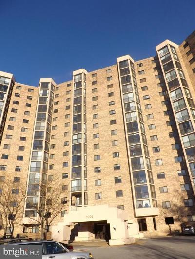 Montebello Rental For Rent: 5901 Mount Eagle Drive #507