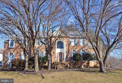 Fairfax County Single Family Home For Sale: 6215 Point Circle
