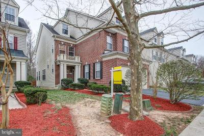 Fairfax County Single Family Home For Sale: 3785 Mary Evelyn Way