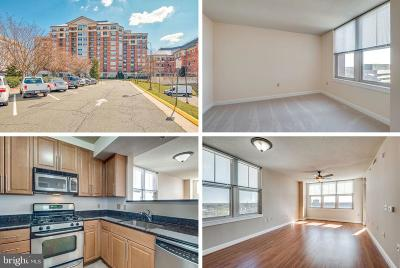 Reston Condo For Sale: 11760 Sunrise Valley Drive #613