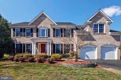 Fairfax County Single Family Home For Sale: 9018 Lupine Den Drive