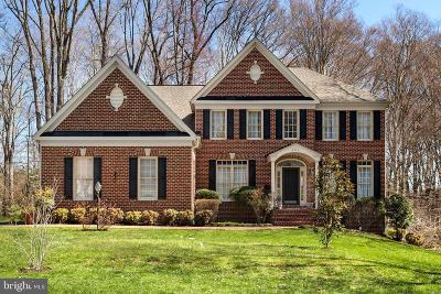 Annandale Single Family Home For Sale: 6916 Cherry Lane