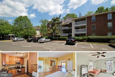 McLean Condo For Sale: 1503 Lincoln Way #304