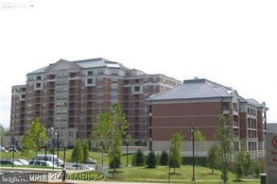Fairfax County Condo For Sale: 11760 Sunrise Valley Drive #906