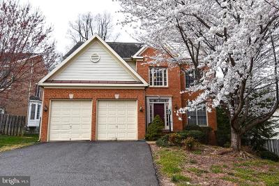 Annandale, Falls Church Single Family Home For Sale: 2224 Great Falls Street