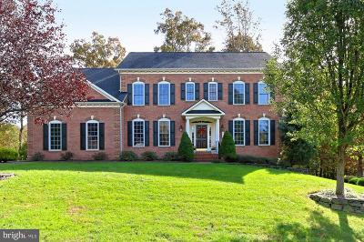 Lorton Single Family Home For Sale: 9205 Marovelli Forest Drive
