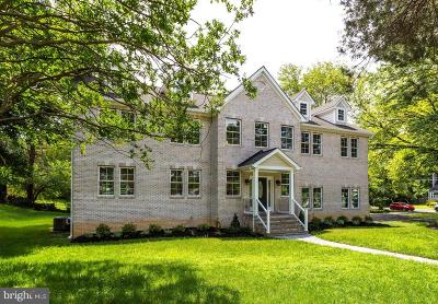 Falls Church Single Family Home For Sale: 3301 Slade Run Drive
