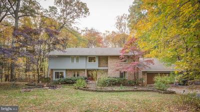 Great Falls Single Family Home For Sale: 1094 Pensive Lane