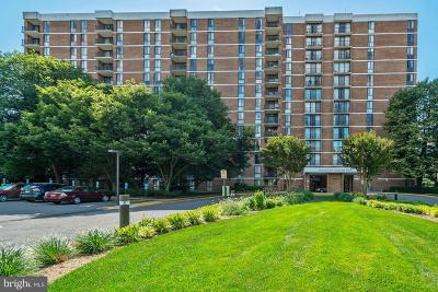 Falls Church Condo For Sale: 2300 Pimmit Drive #403