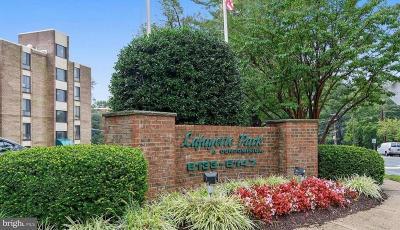 Falls Church Condo For Sale: 6141 Leesburg Pike #605