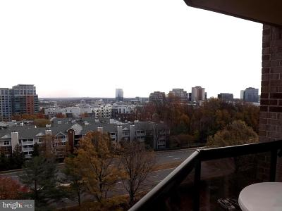 Mclean Rental For Rent: 8350 Greensboro Drive #918