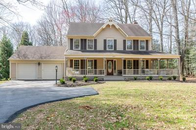 Oakton Single Family Home For Sale: 2820 Center Ridge Drive