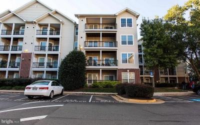 Mclean Rental For Rent: 1600 Spring Gate Drive #2207