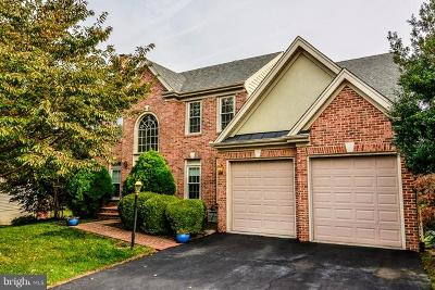 Lorton Single Family Home For Sale: 8497 Silverview Drive
