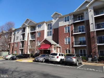 McLean Condo For Sale: 1600 Spring Gate Drive #2402