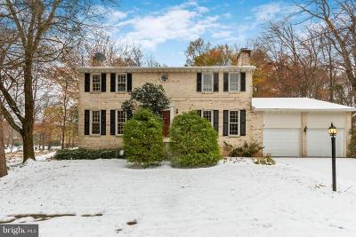 McLean Single Family Home For Sale: 1360 Snow Meadow Lane