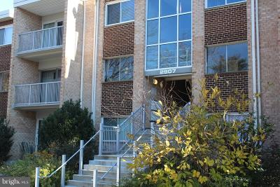 Falls Church Condo For Sale: 2907 Charing Cross Road #4