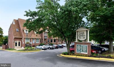 Great Falls Condo For Sale: 10134 Colvin Run Road #A
