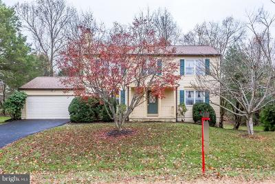 Herndon Single Family Home For Sale: 1152 Bandy Run Road
